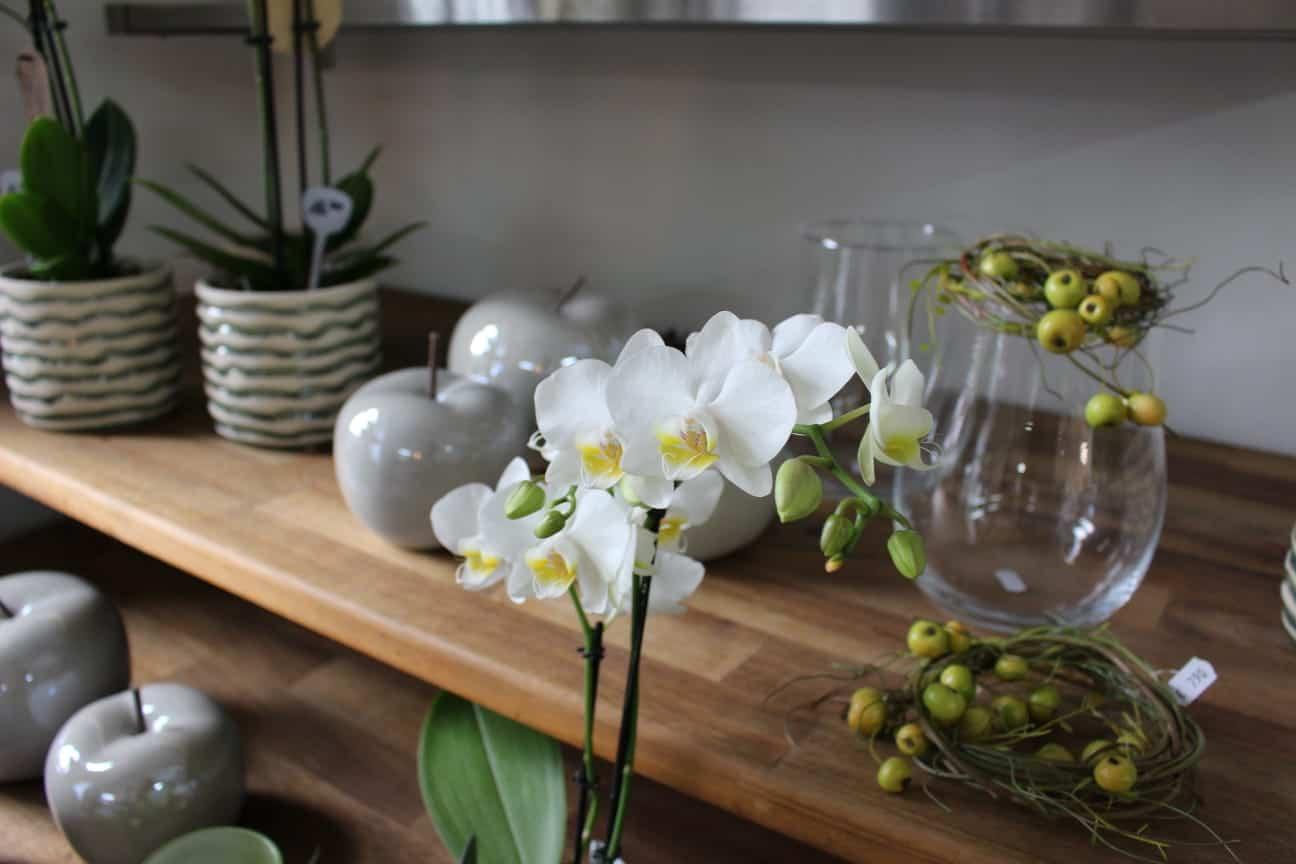 Orchideen und Deko von Bettinas Blütenzauber Allershausen